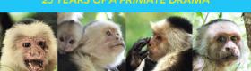 Capuchin_Monkey_Header_600