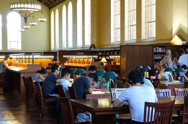 Students studying in Powell library