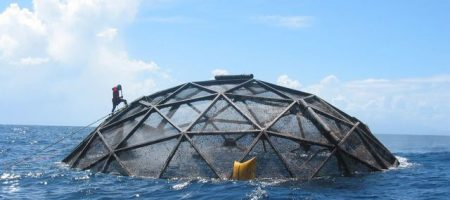 Divers survey submersible cages used to farm cobia off the coast of Puerto Rico. UCLA researchers conducted the first country-by-country evaluation of the potential for marine aquaculture under current policies and practices.
