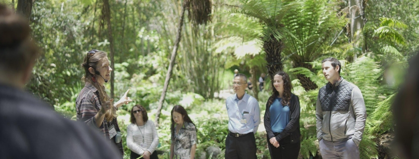 Photograph of people standing in botanical garden listening to tour guide.