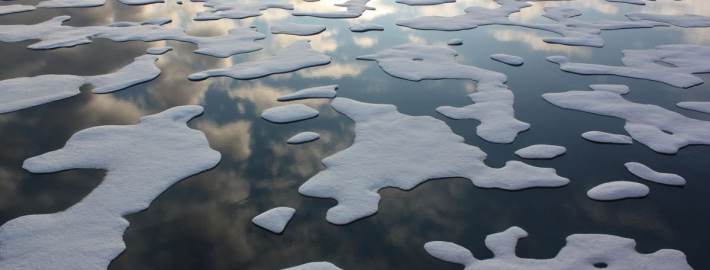 Picture of melting ice in body of water.