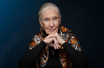 Image of Dr. Jane Goodall