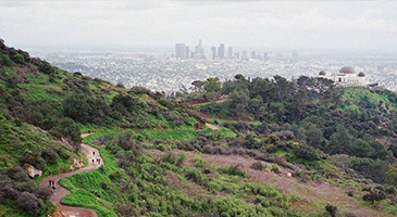 A photo of a Griffith Park vista; the view of the Los Angeles skyline from Griffith Park.