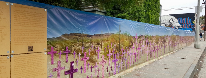 To try to balance against the stark brutality of the numbers, the crosses are shrouded in a color filter of soft pink and purple to represent the fight of international feminism against gender violence.